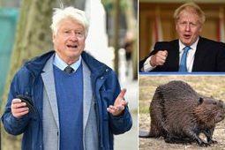 Inventivul Boris Johnson! Premierul Marii Britanii i-a daruit tatalui sau, de ziua acestuia, mai multi castori!